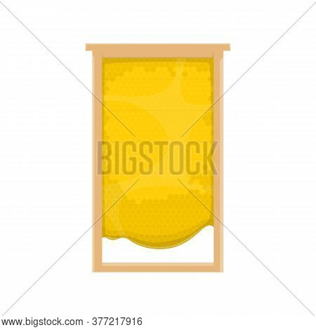 Honeycomb With Honey. Vector Beekeeping Apiary Honeycomb In Wood Frame