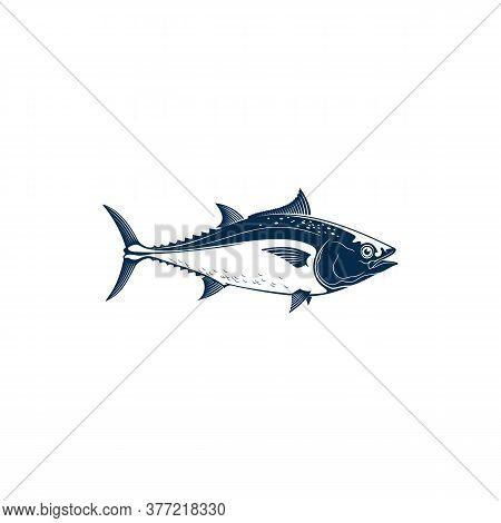 Bluefin Tuna, Blackfin Longtail Yellowfin, Fishing Sport Mascot Isolated. Vector Tuna Saltwater Fish