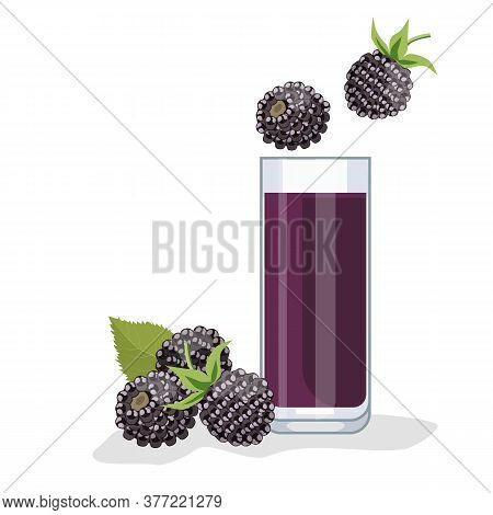 Blackberry Juice In A Glass, Next To Blackberries. White Background, Isolate. Vector Illustration