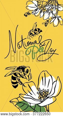 National Bee Day. Vector Design. Outline Style. Vertical Format. Greeting Card, Banner, Poster, For