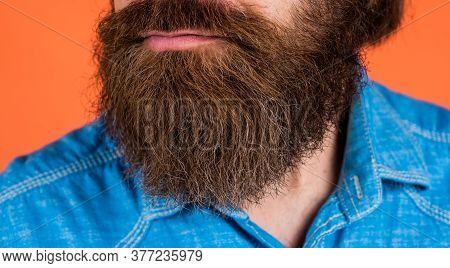 Closeup Of Well Groomed Hair. Hair And Beard Care. Confident And Handsome Brutal Man. Facial Care. M