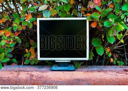 Old Computer Monitor On The Leaves Background