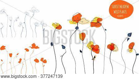 Yellow Poppies Field Line Art Illustration In The Scandinavian Style