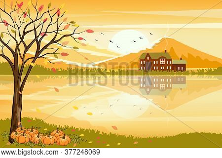 Vector Illustration Of Panorama Autumn Landscape In Countryside With Forest Trees And Leaves Falling