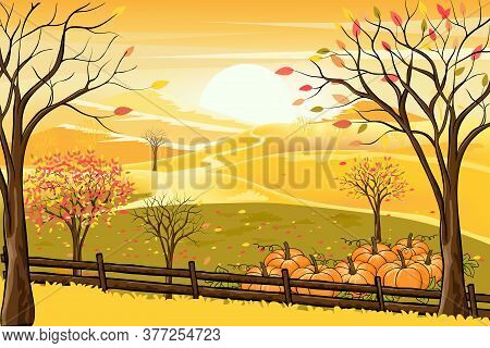 Agriculture, Art, Autumn, Background, Beautiful, Branch, Cartoon, Colorful Background, Country, Coun
