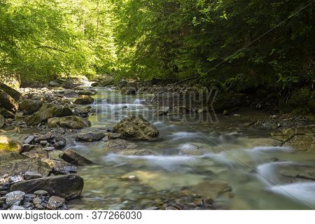 Fast  Mountain River Flow Among Green Forest. Beautiful Nature Of Carpathians. Ukraine. Europe. Summ