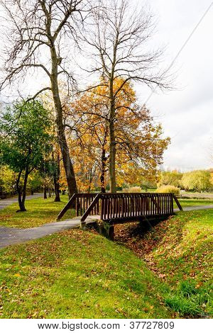 Small Footbridge Over A Moat Filled With Leaves In A Park In Autumn
