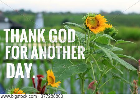 Thankful Inspirational Quote - Thank God For Another Day. Welcoming New Day With Grateful Heart Conc