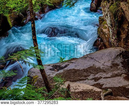 A Small Turbulent Section Of Avalanche Creek Is The Scene For This Beautiful Water.