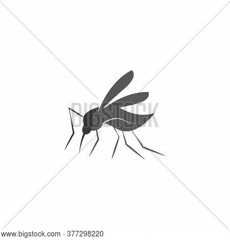 Mosquito Icon Vector Insert Mosquito Flat Illustration Icon App