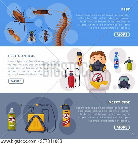 Pest Control Service Landing Page Templates Set, Detecting And Exterminating Insects Website, App, H