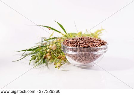 Close Up Flax Seeds In A Glass Bowl. Composition With , Flax Seeds, And Plants On White Background.