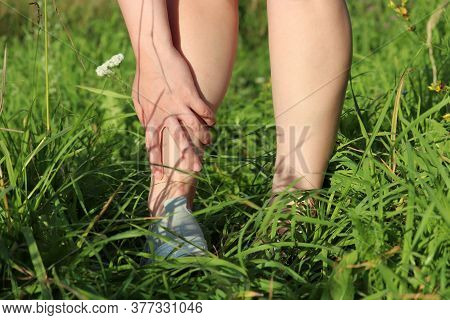 Foot Pain, Woman Grabbed Her Leg While Walking On A Summer Grass. Concept Of Insect Bite, Ankle Spra