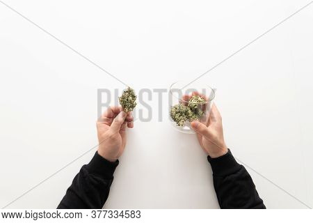 Sativa Medical Health. The Sugar Pot Leaves On Buds. Mans Hands Marijuana Bud. Cannabis Buds In Grin