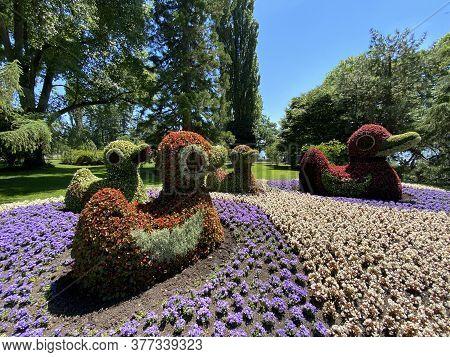 Floral Sculptures Of Birds Or Blumenfiguren Von Vögeln (flower Island Mainau On The Lake Constance O