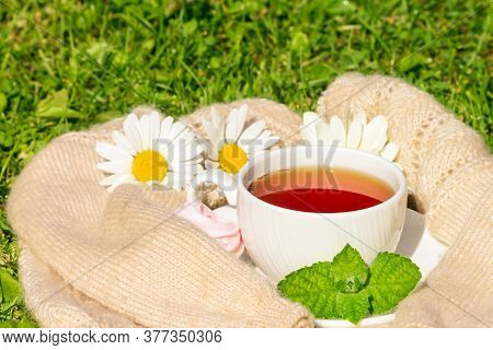 A Cup Of Hot Herbal Tea With Dessert Wrapped In A Woolen Jumper, Outdoor Tea Drinking.