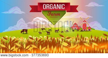 Organic Farm Nature Landscape With Livestock, Wheat, Mill, Clouds, Morning Sunrays, Red Ribbon. Vect
