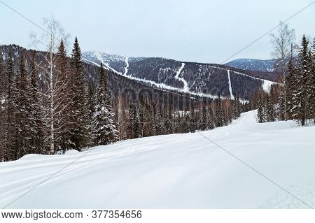 Winter Landscape In Gornaya Shoria. Russia, Kemerovo Region, Sheregesh Ski Resort, Sector E. Freerid
