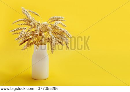 Ears Of Wheat Close Up In Small White Vase. Harvest Time Concept. Cereal Crop. Monochrome Still Life