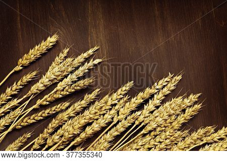 Ears Of Ripe Wheat. Dark Brown Wooden Background With Ripening Ears Close Up. Concept Of Autumnal Ha