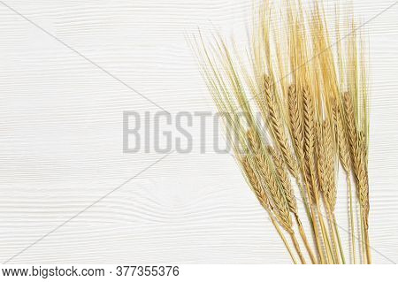 Ears Of Ripe Rye. White Wooden Background With Ripening Ears Close Up. Concept Of Autumnal Harvest T