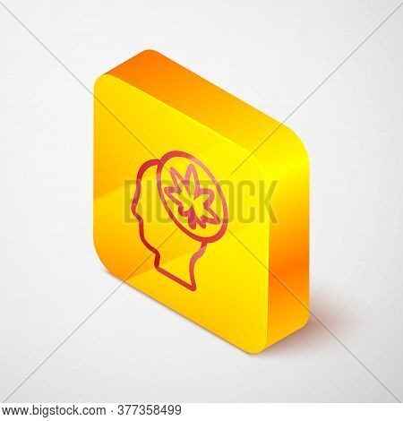 Isometric Line Male Head In Profile With Marijuana Or Cannabis Leaf Icon Isolated On Grey Background