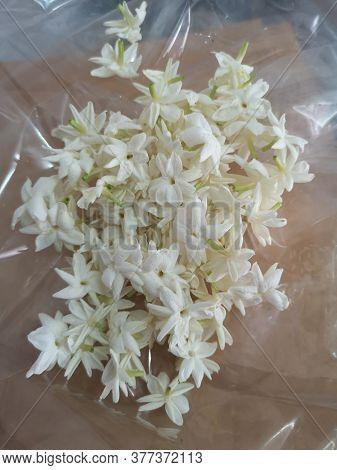 Jasminum Sambac Jasmineae White Flower Beautiful Bouquet On Plastic Background