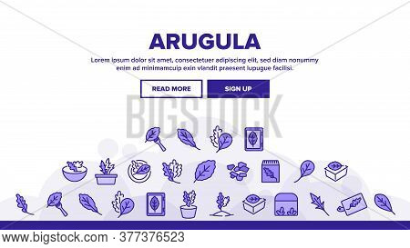 Arugula Or Rucola Landing Web Page Header Banner Template Vector. Arugula Plant In Greenhouse And Ga