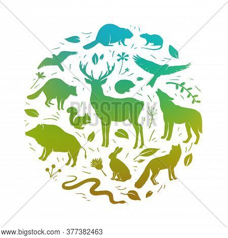 Vector Forest Animals Collection In Circle Frame. Flat Animals Silhouettes In Green Colors. Design F