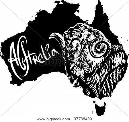Merino ram on map of Australia. Black and white vector illustration. poster