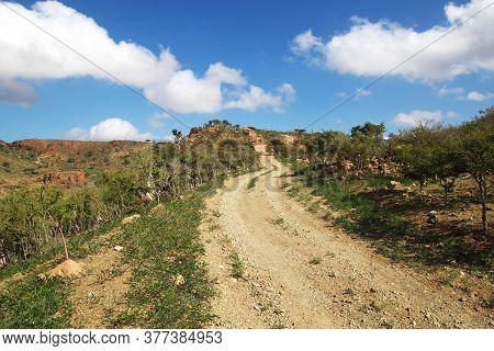 The Road On Homhil Plateau, Socotra Island, Indian Ocean, Yemen