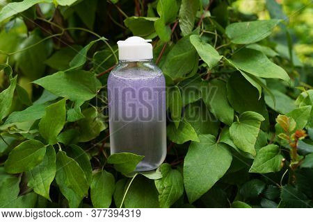Bottle With Toner Or Tonic Bottle For Skincare In Greenery. Natural Cosmetic Concept