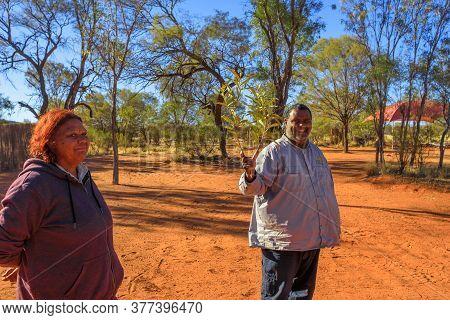 Kings Creek, Australia - Aug 21, 2019: Australian Aboriginal Native Guides Shows The Bush Plants Use