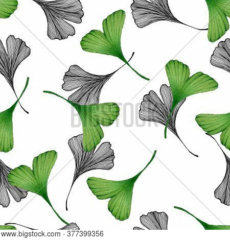 Ginkgo Seamless Design, Hand Drawn Line Art And Watercolor Illustration With Ginkgo Leaves For Wrapp