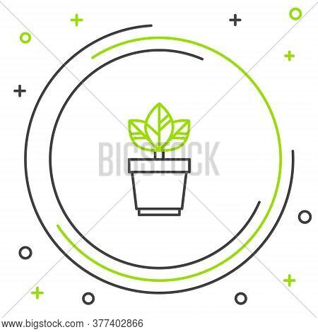 Line Flowers In Pot Icon Isolated On White Background. Plant Growing In A Pot. Potted Plant Sign. Co