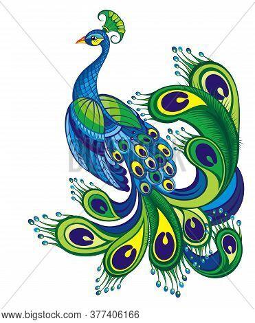 Peacock. Bird Symbol. Vector Bird Background  For Your Design