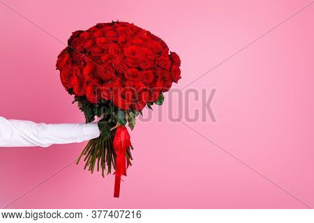 Photo Of Cropped Man Arm Hold Big One Hundred Red Bright Roses Bunch Giving Girlfriend Surprise Not