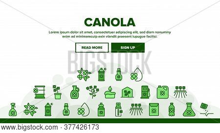 Canola Agricultural Landing Web Page Header Banner Template Vector. Canola Agriculture Flower Field