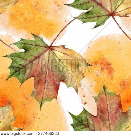 Hand Drawn Watercolor Autumn Leaf Seamless Pattern With Watercolor Spine On White Background.