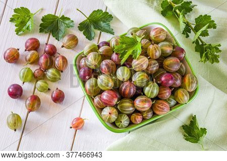 Gooseberry. Ripe Gooseberries In A Salad Bowl On A White Wooden Table