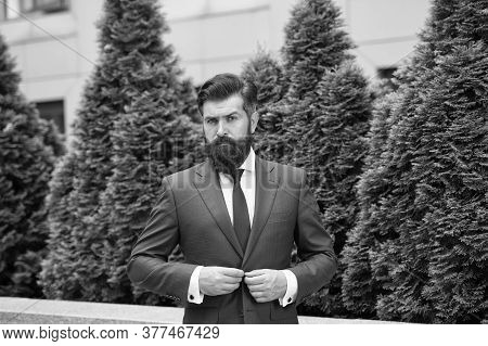 Business Man Walking Outdoor. Businessman In Nature. Energy Efficiency Concept. Bearded Man In Jacke