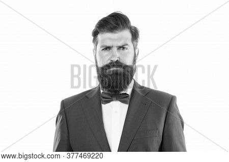 Handsome Brunette Model With Beard And Moustache. Business Man Portrait. Perfect Suit. Bearded Man I
