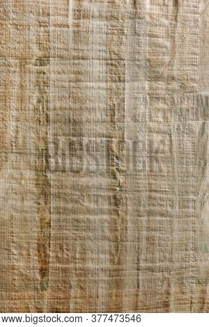Fragment of Egyptian papyrus. Papyrus texture