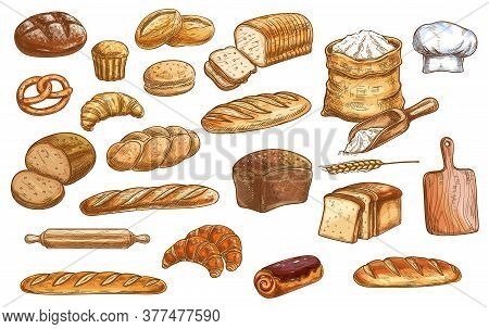 Bread And Pastry. Bakery Products Color Isolated Sketches. Wheat, Rye And Pullman Bread, Baguette An