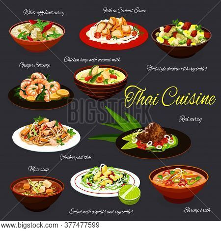 Thai Cuisine Seafood And Meat Dishes, Vector Food. Vegetable Squid Salad, Chicken And Miso Soups, Re