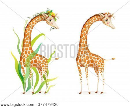Giraffe In Nature Realistic 3d Cartoon Illustration For Zoo, Safari Or Kids Picture Book. Cute Grace