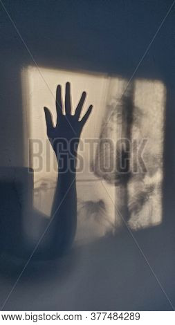 Defocus Female Hand Silhouette Of Shadows On Wall Looks Like Cinematic Frame From Scary Movie. Sunli