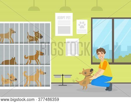 Animal Shelter With Dogs In Cages, Male Volunteer Man Caring For Homeless Animals Vector Illustratio