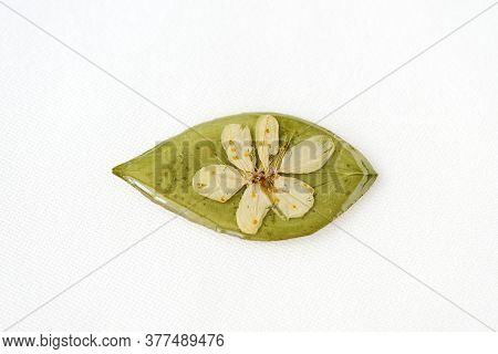 Green Leaf And White Flower Filled With Epoxy Resin On A White Textile Background, Top View. The Bas