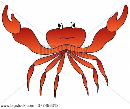 Crab. Marine Invertebrate Animal With Claws Of The Order Of Crustaceans. Vector Illustration. Isolat